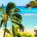 ハワイ旅行・ツアー