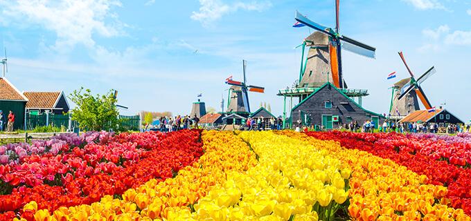 オランダ行 格安航空券/LCC¥51,...