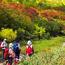 日帰り自然・スポーツツアー検索