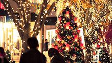 クリスマスはご家族やカップルで憧れホテルへ