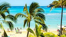 大人気リゾート・ハワイの魅力をご紹介