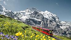 在住ナビゲーターが教えるスイスの絶景