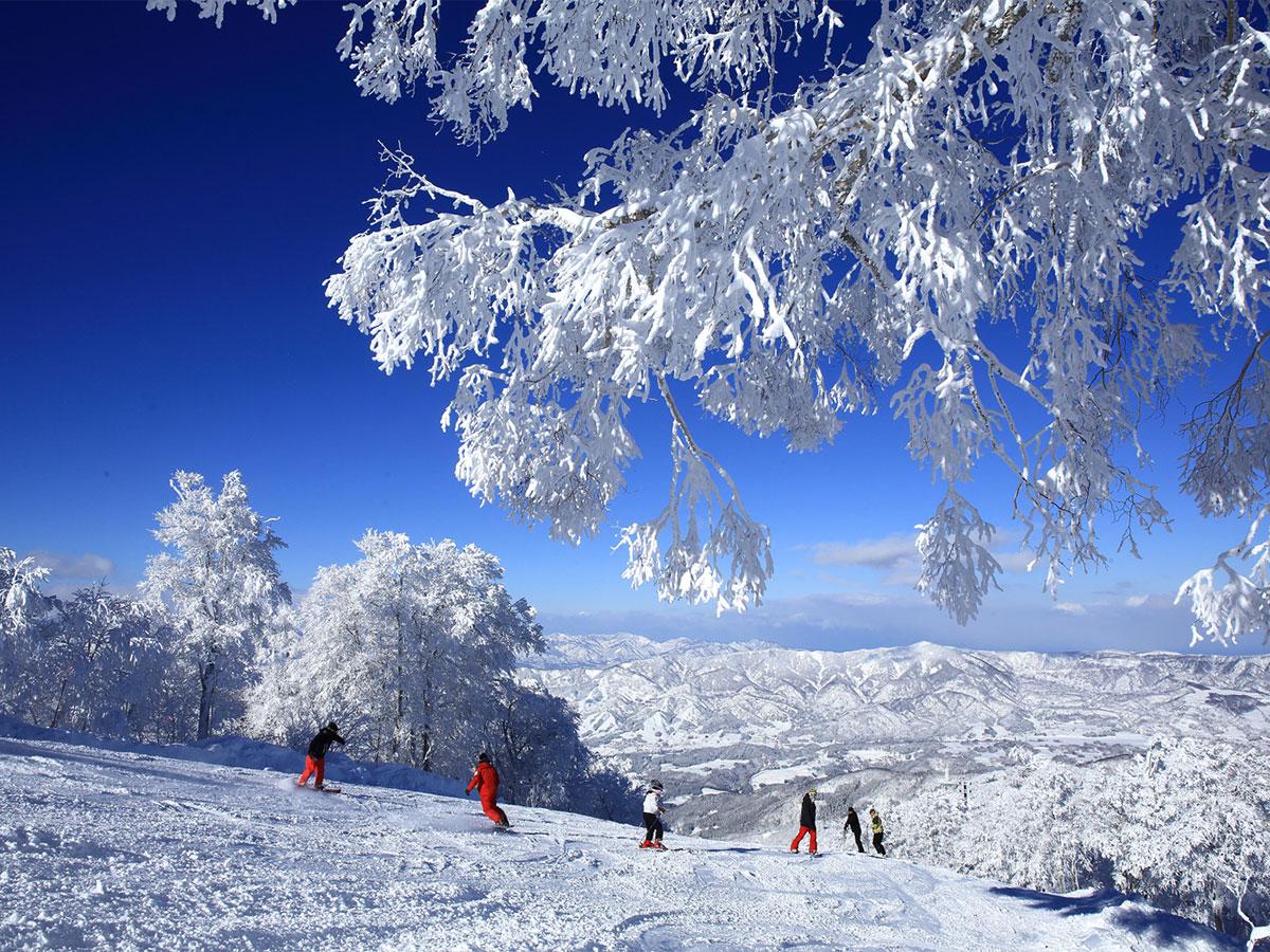 安比高原スキー場のゲレンデ写真