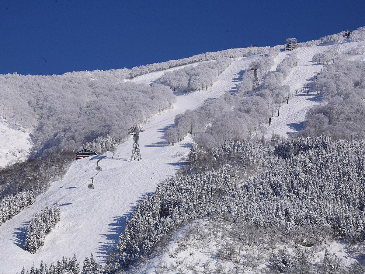 六日町八海山スキー場のゲレンデ写真