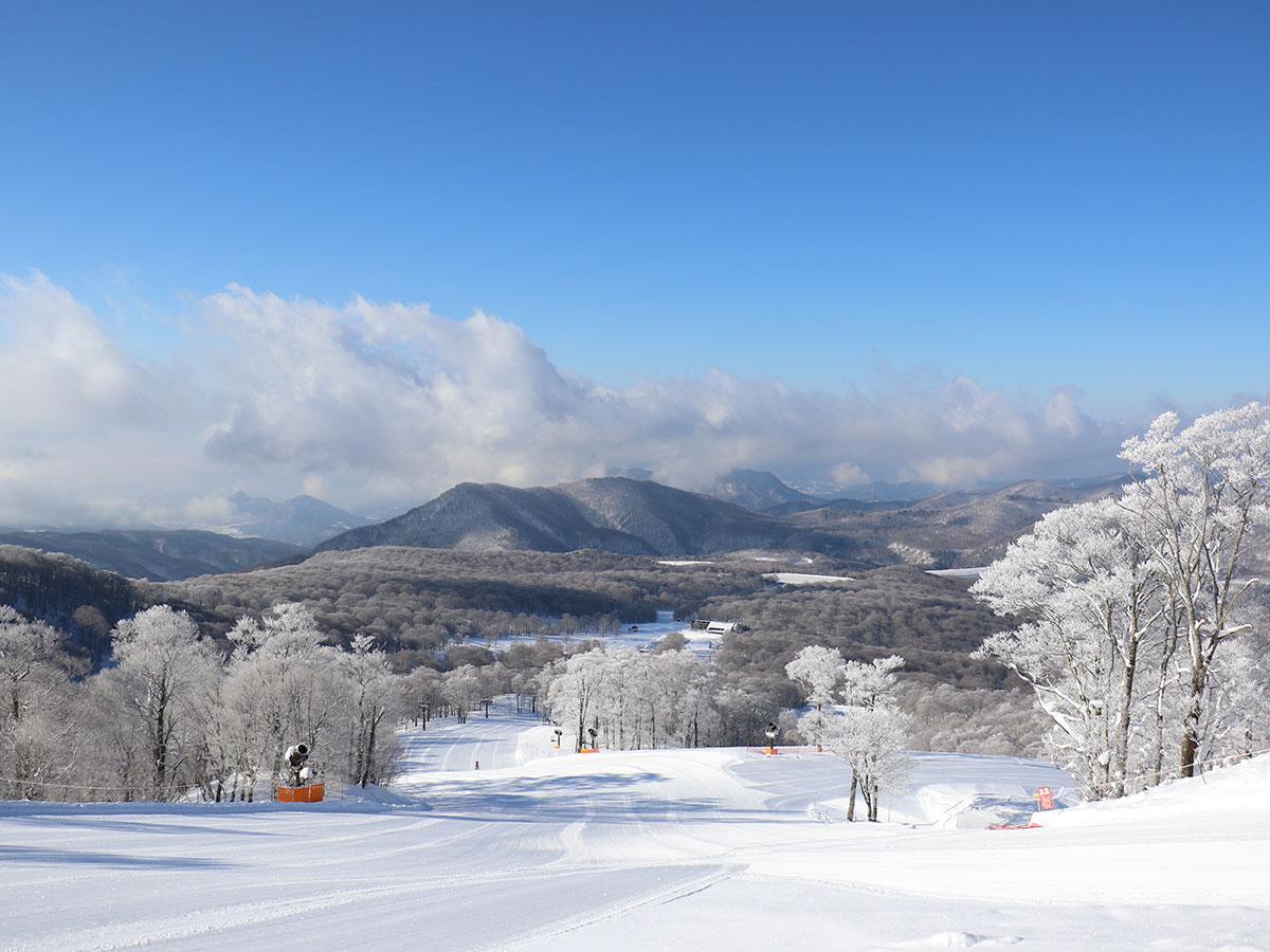 たんばらスキーパークのゲレンデ写真