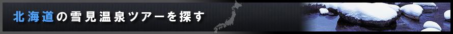 北海道の雪見温泉ツアーを探す